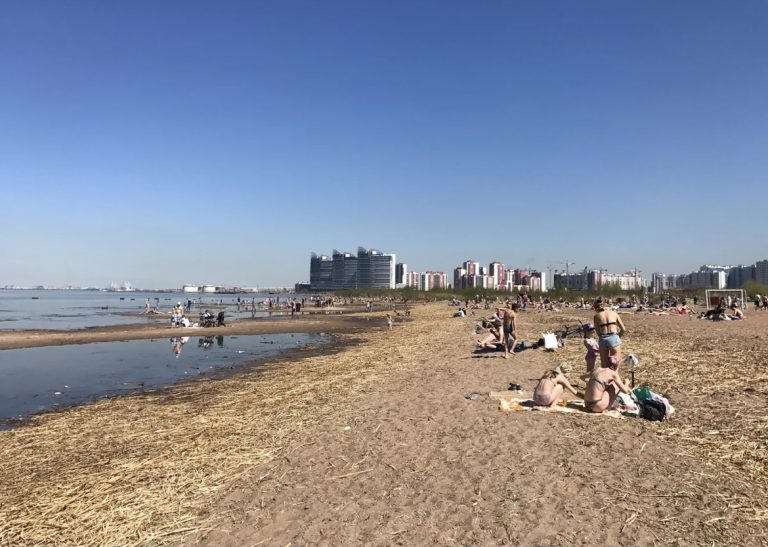ОНФ вместе с чиновниками будет поддерживать чистоту Жемчужного пляжа в Петербурге
