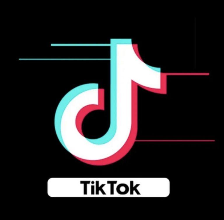 В TikTok начнут рекламировать предстоящие выборы